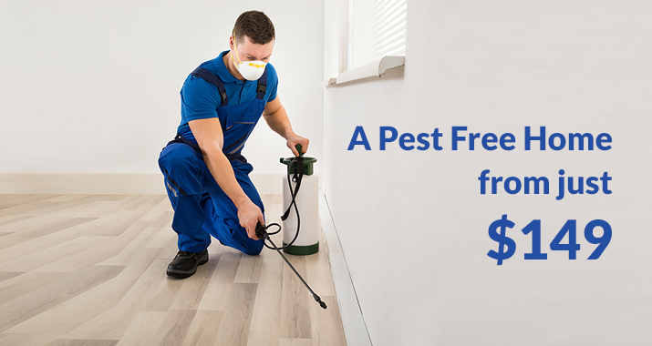 Pest Free Home across the Central Coast
